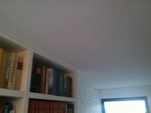 Hal/Entree met spanplafond